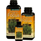 Palm Focus 300 ml